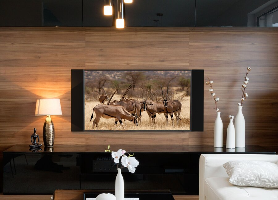 For Incomparable Home Entertainment, Team Up with a Trusted Home Theater and AV Installer